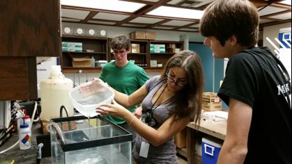 Three MAST Academy Interns Designing Outreach Activity