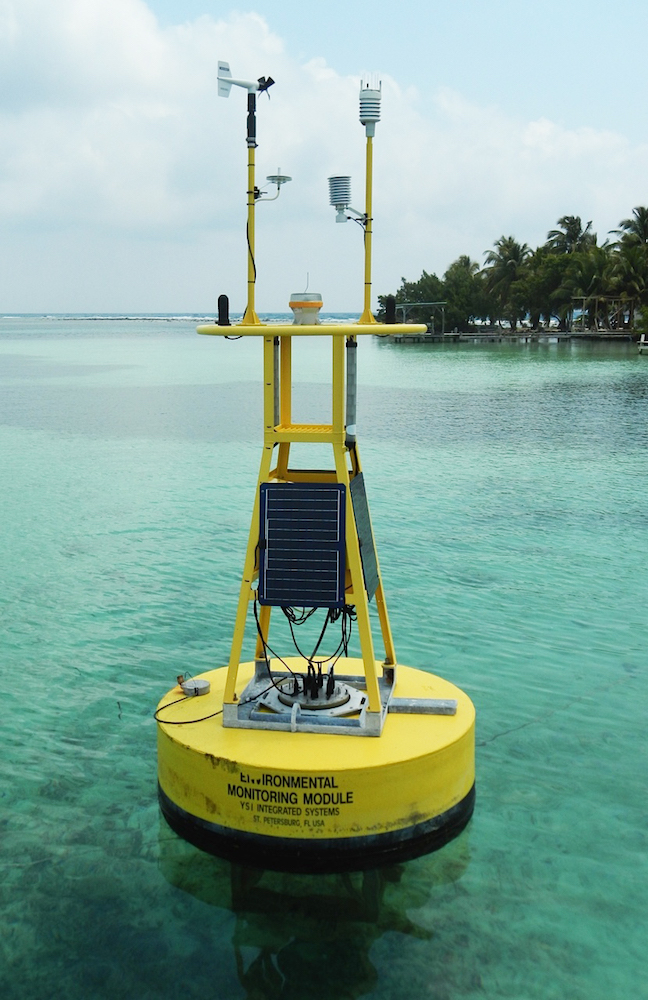 CREWS coral monitoring station in South Water Caye, Belize. Image credit: NOAA