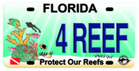 Reef license plate