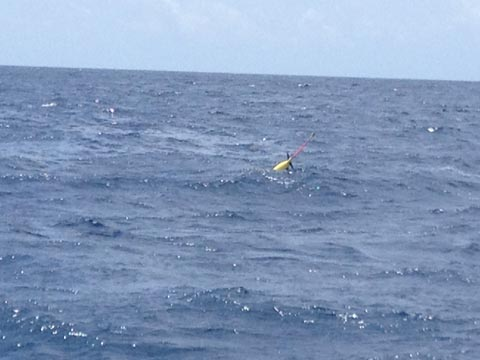 The first glider successfully deployed and transmitting data.
