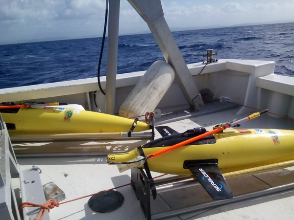 Both gliders on board the R/V La Sultana on their way back to shore. Image credit: NOAA