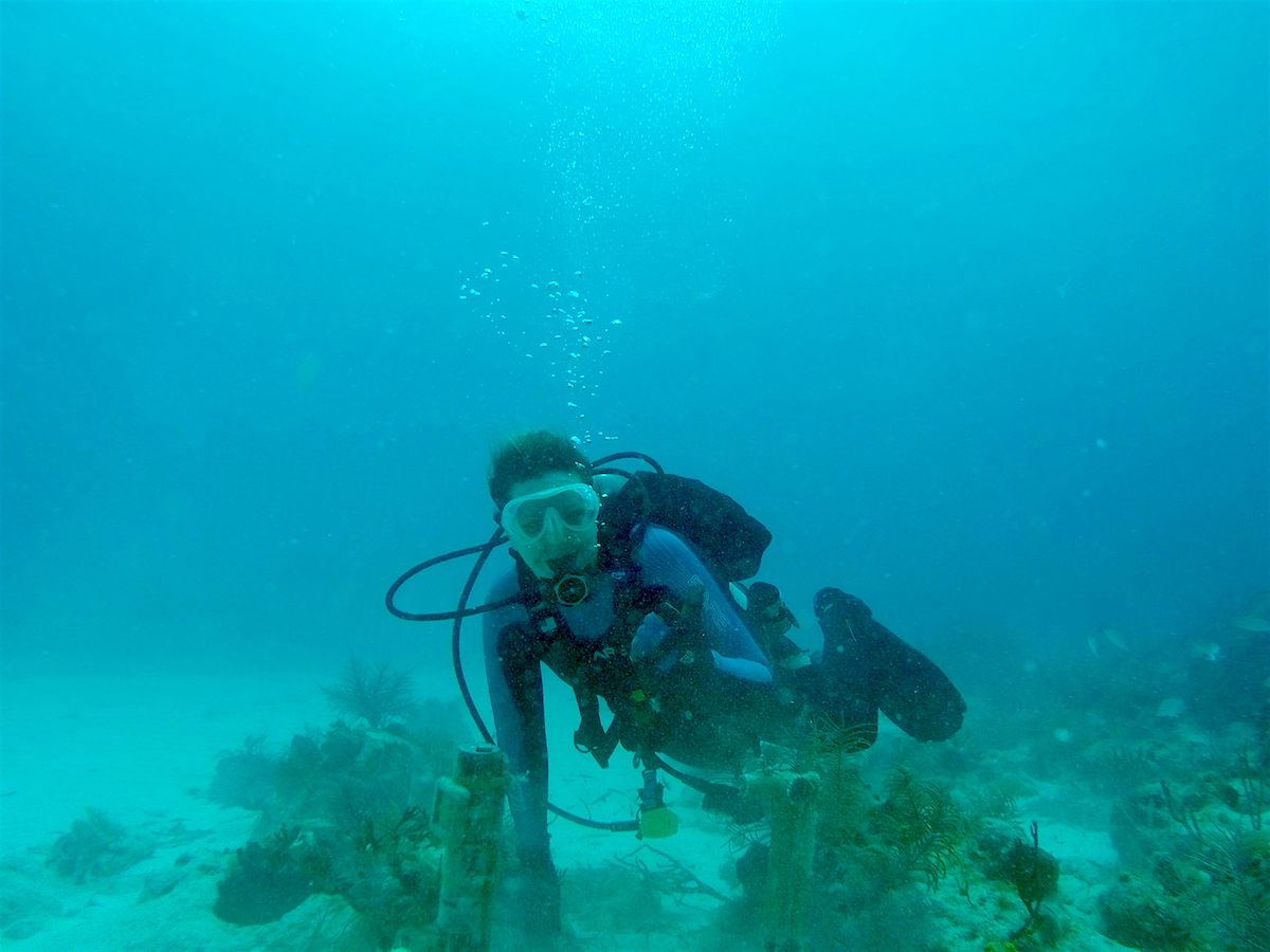 AOML coral scientist Renee Carlton prepares to swap out the ECO-PAR instrument at a dive site in the Upper Keys. Image credit: NOAA
