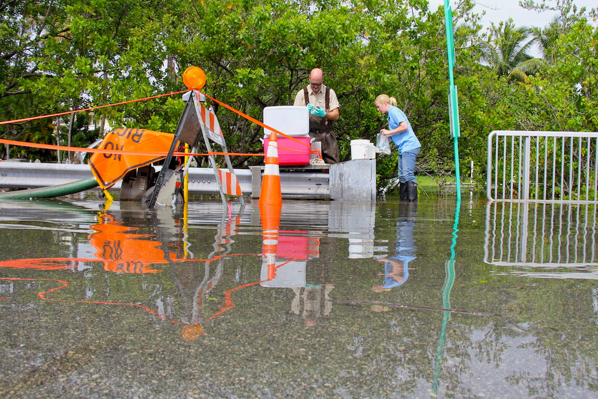 Scientists from FAU and AOML collect water samples at a pumping location along Indian Creek Dr. Image credit: NOAA
