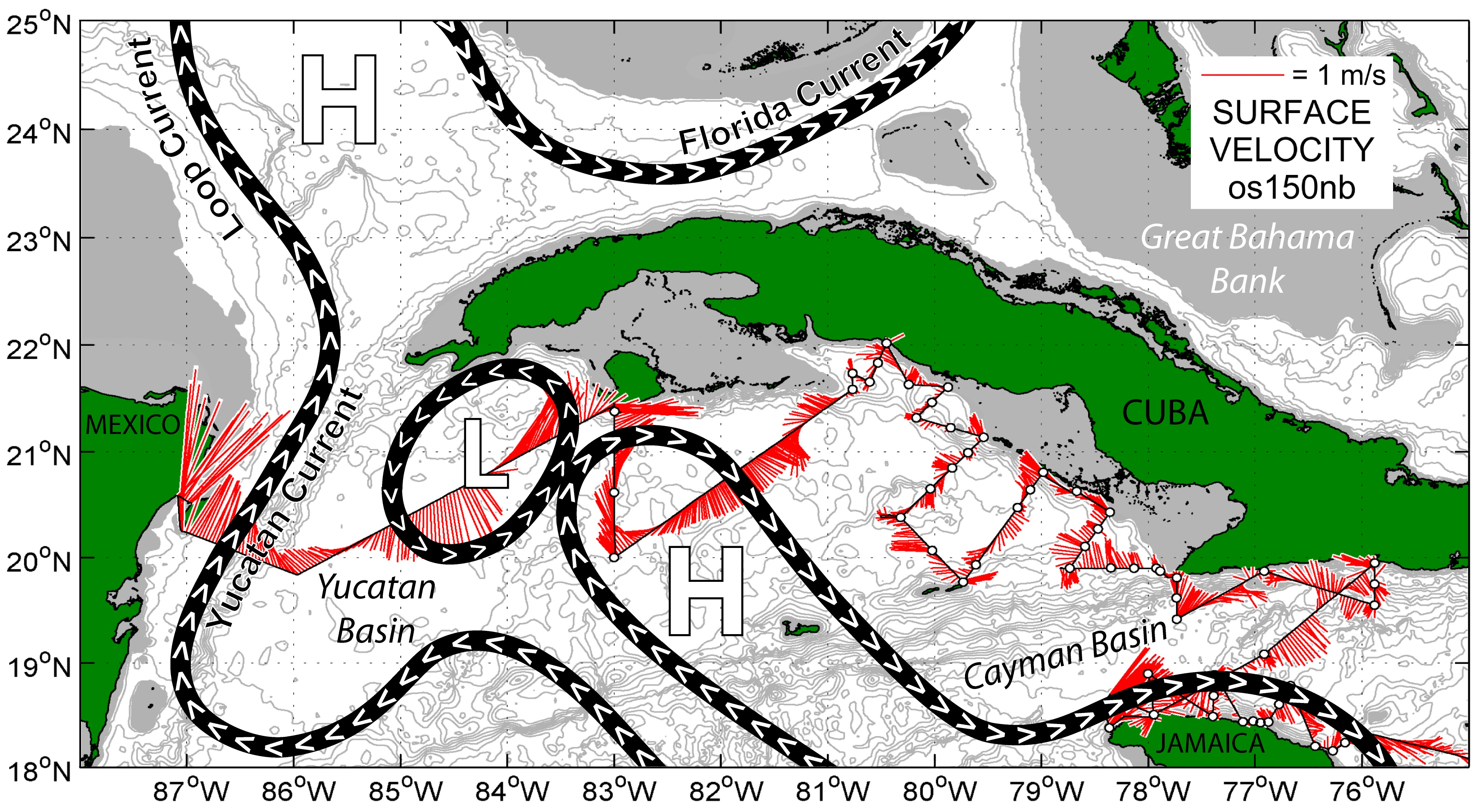 This map shows surface current velocity vectors (in red) measured with the NOAA Ship Nancy Foster's hull-mounted acoustic Doppler current profiler (ADCP) between April 26 - May 5, 2015.  A schematic of the currents is also presented (based on satellite altimetry for the period).  The white dots along the survey track indicate locations where oceanographic measurements were made and where net tows to collect larval fish were conducted. Credit: NOAA
