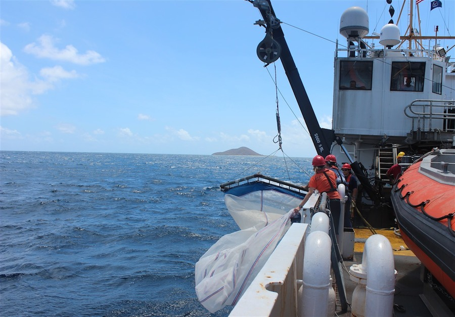 The crew recovers one of the S10 nets that are used to collect the larval fish. Image credit: NOAA