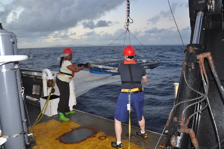The crew recovering the S10 net off the back of the Nancy Foster. Image credit: NOAA