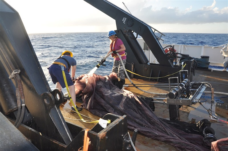 Rinsing down the net after a 100 meter journey. Image credit: NOAA