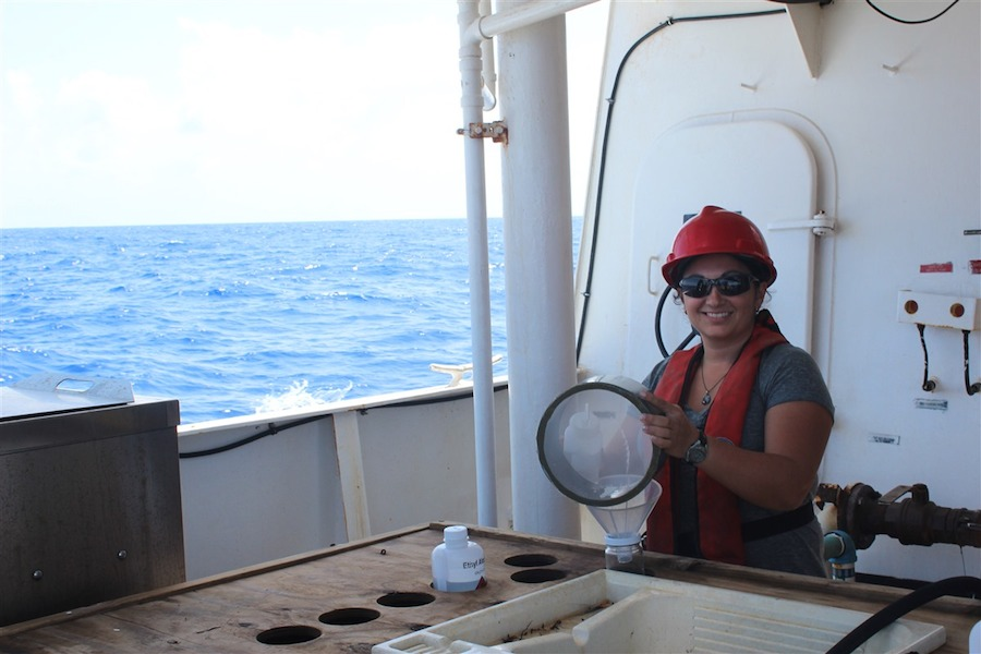 Alexis Sabine sorts through the contents of the S10 net. Image credit: NOAA
