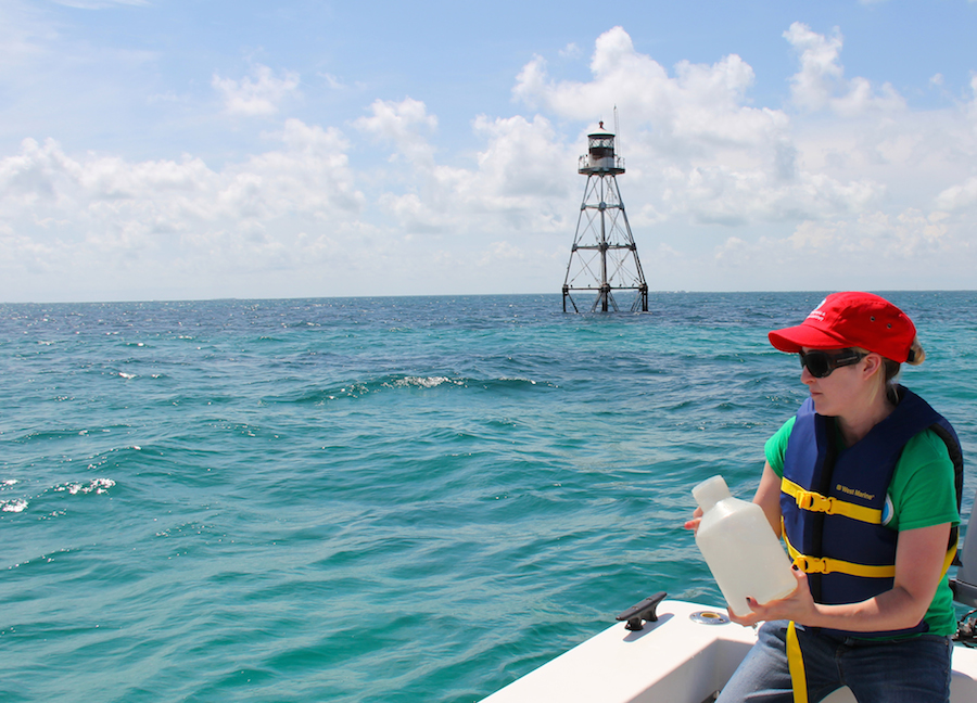 An AOML intern bottles a sample at Tennessee Reef in the Florida Keys National Marine Sanctuary. Image credit: NOAA