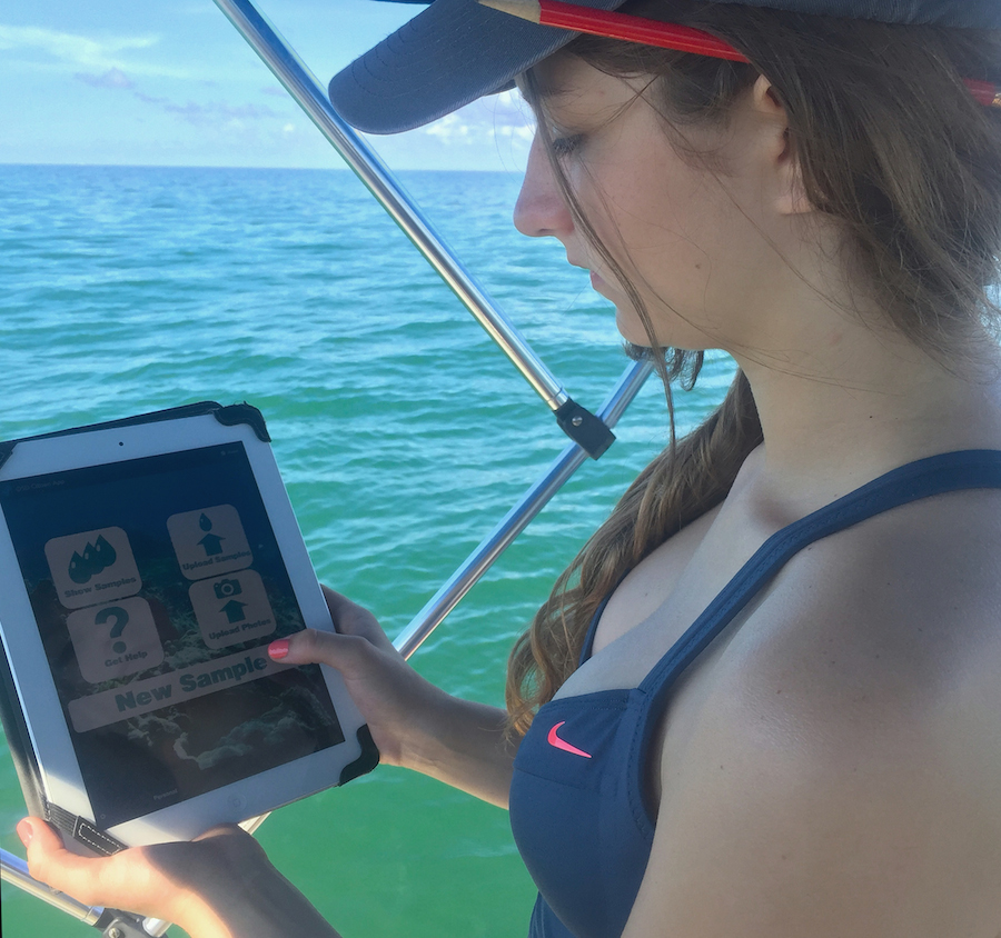 An AOML citizen scientists logs her sampling effort into the MyOSD iOS application. Image credit: NOAA