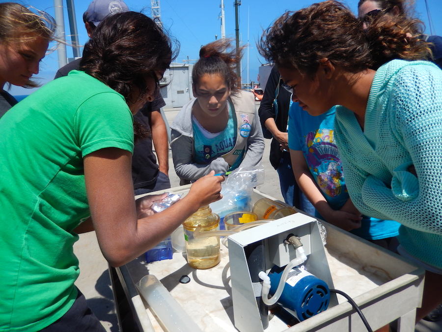 A troop of girl scouts collect a water sample at a NOAA Ocean Sampling Day site in La Jolla, CA. Image credit: NOAA