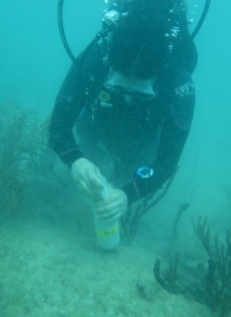 AOML Scientist Xaymara Serrano collects sediments from a site near the Port of Miami to use in laboratory experiments. Image credit: NOAA