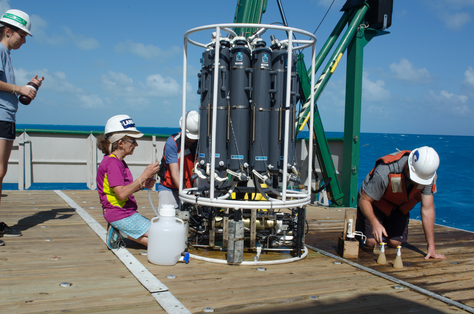 Scientists collecting water samples from the Niskin bottles. Image credit: NOAA