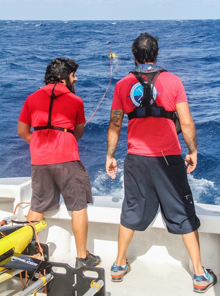 Scientists look on as the underwater glider is sent into the ocean. Image credit: NOAA