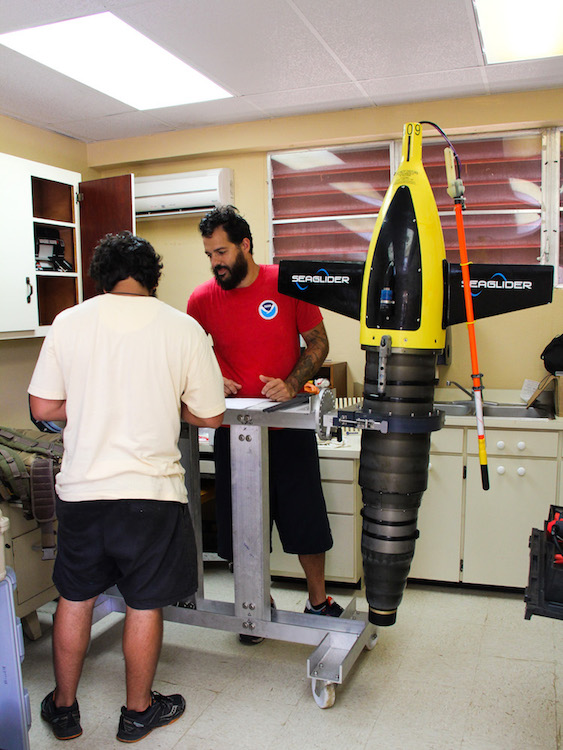 Scientists look over plans for deployment of the underwater gliders. Image credit: NOAA