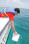 An AOML intern scoops up a water sample on Ocean Sampling Day 2014 in the Florida Keys. Image credit: NOAA