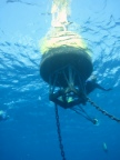 Underwater view of Little Cayman CREWS Station. Image credit: NOAA