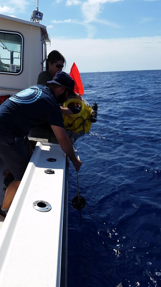 AOML oceanographers deploy a dropsonde at a monitoring site in the Straits of Florida.
