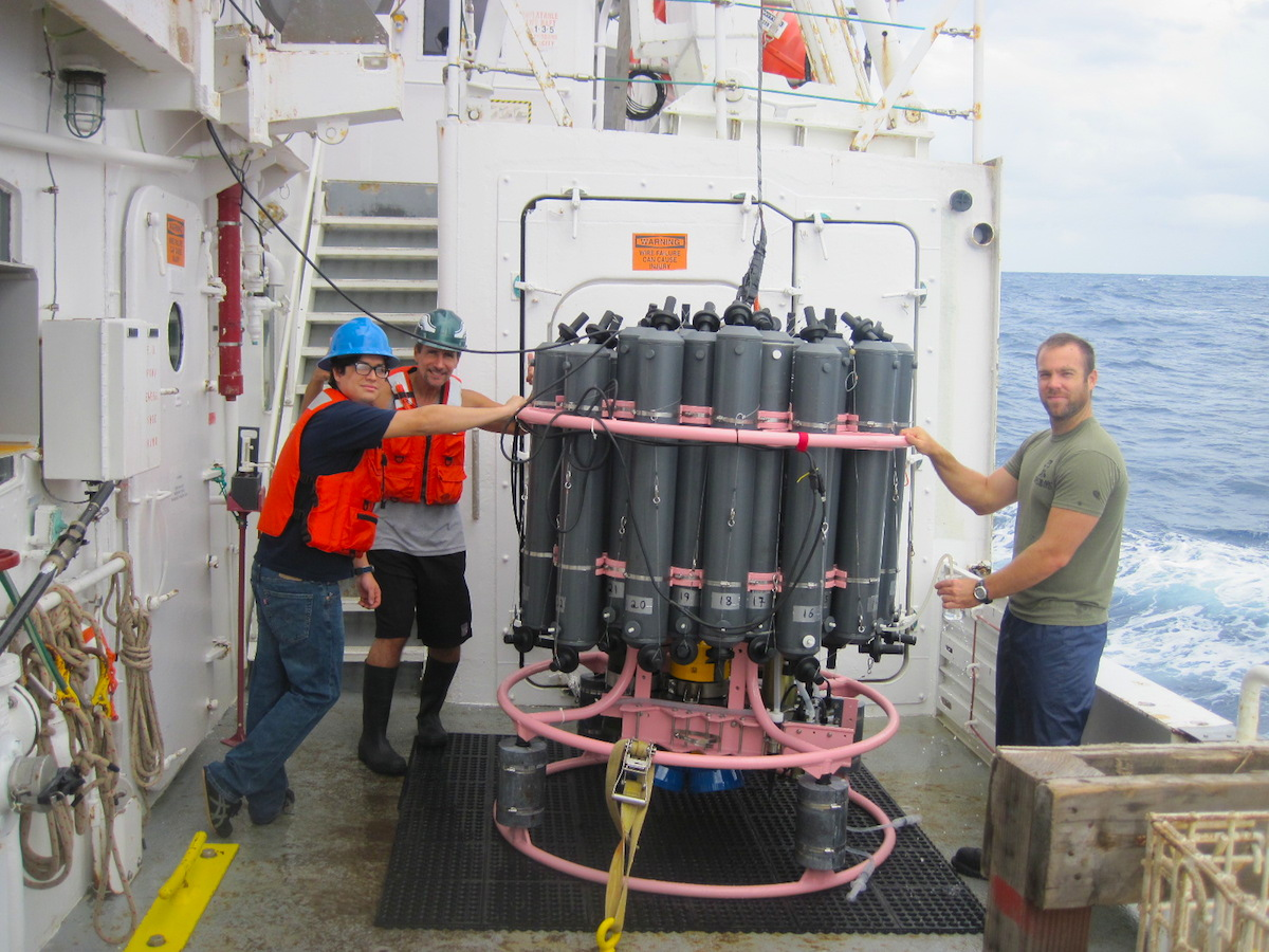 AOML scientists collect water samples and acoustic Doppler current profiler data from the CTD package after recovery. Image credit: NOAA