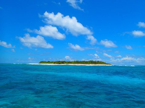 One of many uninhabited islands in the Chagos archipelago. Chagos is home to the world