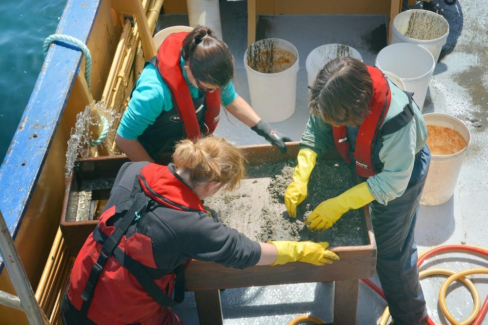 Taking Seawater Samples