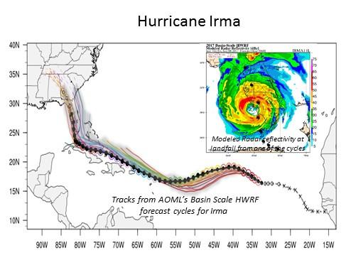 Hurricane Irma Model Results