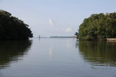 Fieldwork photo of a channel between two mangrove banks taken by one of our scientists during a Juvenille Sportfish Survey in the Florida Bay. Calm waters, channel markers and a blue sky are indicative of a typical on-the-water scene from the area. Photo Credit, NOAA.