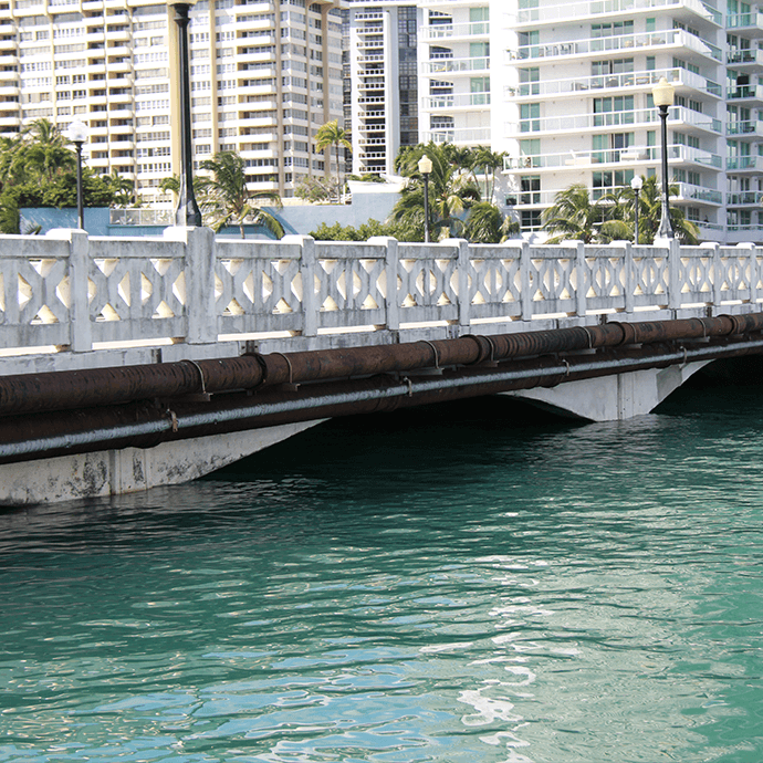 King Tide: tide at 10:30am shows high watermark on a bridge in Coconut Grove
