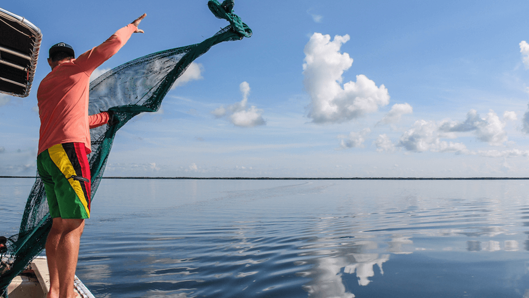 scientist casting green net over still water from the keel of a boat in the Florida Bay for the Juvenile Sportfish Research Project.