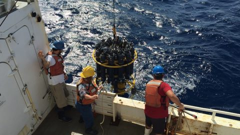 Finishing the CTD casts with the help of Lynne Butler (Center). Image credit: NOAA