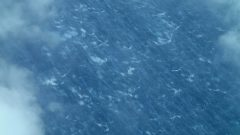 Wind streaks and whitecaps on the ocean surface from Hurricane Edouard
