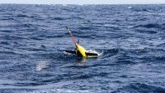 Underwater glider mission takes off in the waters of Puerto Rico. Image credit: NOAA