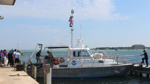 The NOAA team readies the R/V Hildebrand for the release of a rehabilitated leatherback. Image credit: Gulfarium Marine Adventure Park.