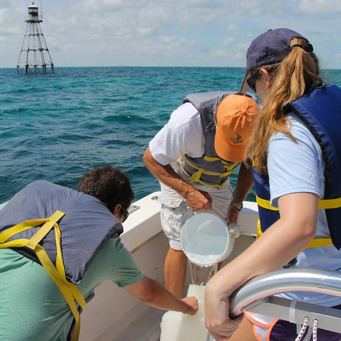 AOML staff and interns collect a sample at Tennessee Reef in the Florida Keys National Marine Sanctuary. Image credit: NOAA