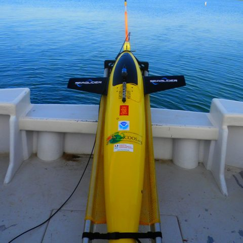 The glider rests on the deck of the R/V La Sultana before deployment. Image credit: NOAA