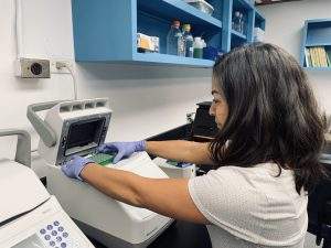 Photo of Stephanie Rosales performing a genetic analysis of a coral tissue sample