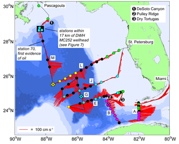 "In-situ surface current velocity from ADCP (red vectors) and CTD station markers are shown for the July 2010 survey. Marker colors indicate the station θ-S profile classification as either GCW, LCW, EFCW, Coastal Shelf Water (green), or mixed-interleaved (black). Stations lacking waters denser than σθ = 24.0 kg m-3 are shown as small black dots. Prototype profile locations are indicated by an ""x"" and an enlarged marker. Letters identify selected sections along the cruise track. Image Credit: NOAA AOML."