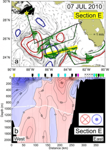 SADCP surface current vectors (green) are plotted with synoptic fields of altimetry-derived surface velocity (gray) for the highlighted Section E. The major cyclonic (blue lines) and anticyclonic (red lines) mesoscale circulation features are indicated. The location of the MC252 wellhead is marked with a yellow star, and an estimate of surface oil coverage for the same period (from NOAA/NESDIS) is shown in black (panel a). Current velocity structure, normal to the section, produced from continuous SADCP data (coverage to ~200 m) and discrete LADCP data (dotted vertical lines; coverage to 2000 m) is also presented (panel b). Labeled velocity contours (black lines) are shown in cm s-1. The single white density contour represents the 27.66 kg m-3 isopycnal. θ-S profile classifications are also shown for each CTD station along the section (colored pointers). Image Credit: NOAA AOML.
