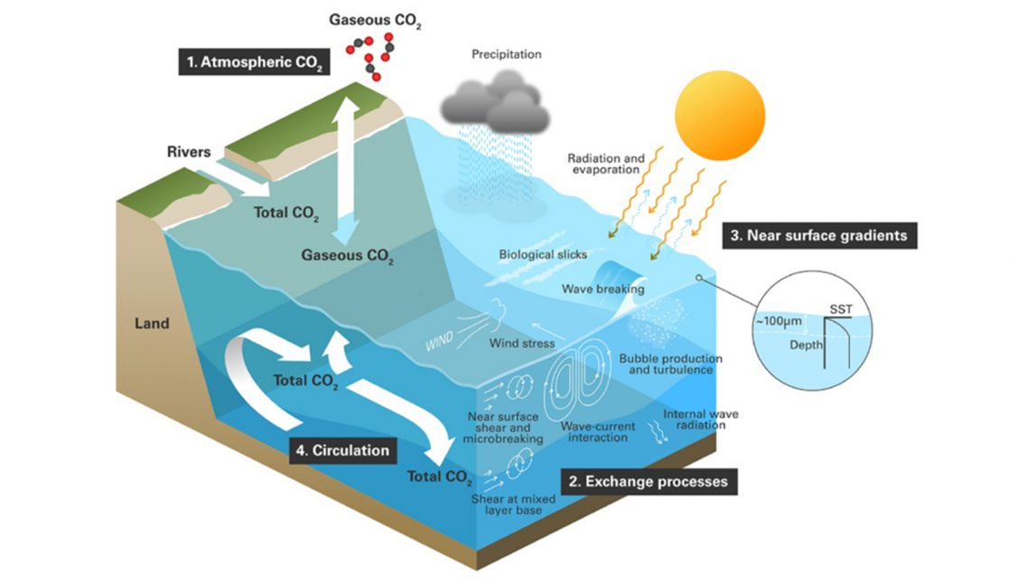 Diagram that shows the interactions, exchange, and circulation of carbon dioxide within the ocean, identifying where satellite-based Earth observations are likely to play a leading role in expanding understanding and capability: (1) atmospheric measurements at the ocean surface; (2) quantifying gas, momentum, and heat atmosphere–ocean exchange processes; (3) capturing near-surface gradients in the water; and (4) measuring internal circulation and surface transport. Image from Frontiers in Ecology and the Environment.